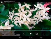 HD Video Player para Android